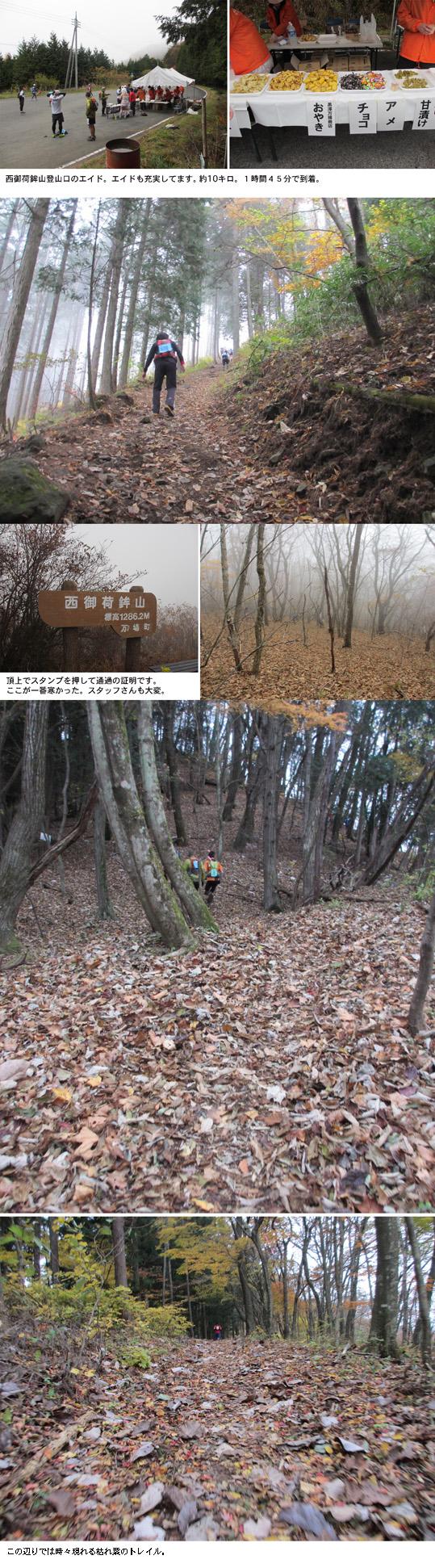 12.11.11-3.jpg